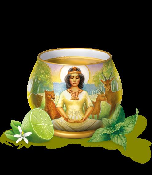 Menthe Citron Vert